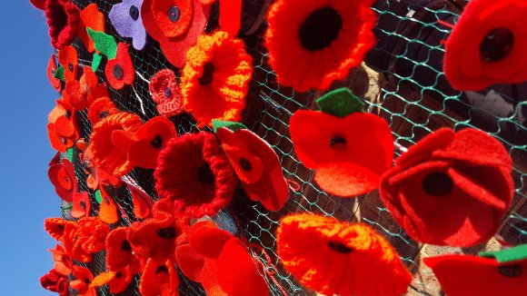 WW1 Commemoration Poppies at the Village Hall (1)