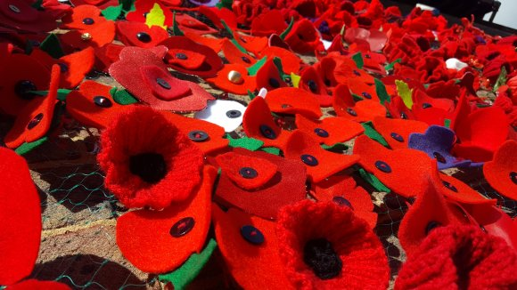 WW1 Commemoration Poppies at the Village Hall (4)
